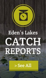 Catch Reports