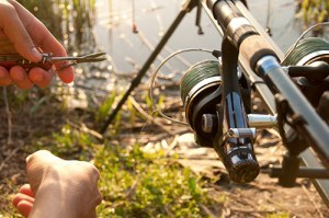 5 Tips To Net The Carp Catch Of Your Life