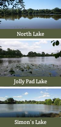 The 3 Lakes at Eden's Lakes