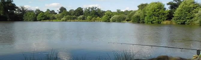 Eden's Lakes - Carp Fishing Holiday