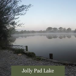 Eden's Lakes Jolly Pad Lake